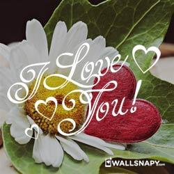 2019-love-whatsapp-images