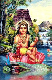 bala-murugam-with-peacock-hd-wallpaper
