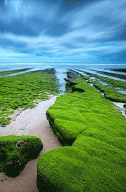 beach-with-grass-hd-wallpaper