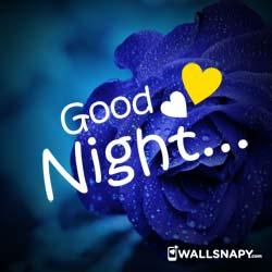 Beautiful Good Night Love Dp Status Images Pictures Wallsnapy