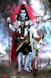 beautiful-lord-shiva-with-cow-wallpaper-for-mobile-phone