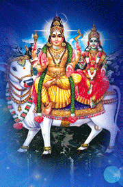 best-god-siva-sakthi-with-cow-hd-images