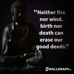 buddha-best-quotes-dp-images-download