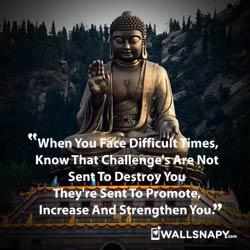 buddha-life-quotes-image