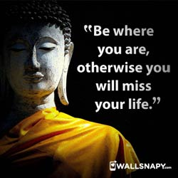 buddha-quotes-dp-hd-images-download