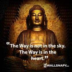 buddha-quotes-dp-wahatsapp-download