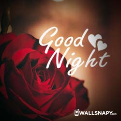 cute-good-night-images-dp