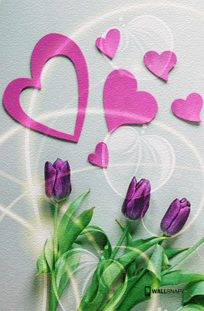 Full Hd Love Wallpapers Free Download Wallsnapy