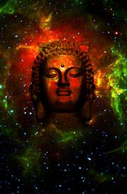 lord buddha hd photos buddha wallpaper for android primium