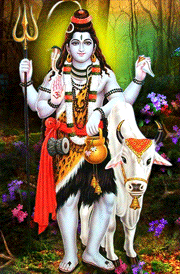 god-siva-with-cow-hd-images