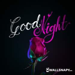 good-night-dp-images-download