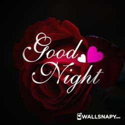 good-night-love-you-dp-hd-images