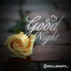 good-night-whatsapp-profile-hd-images-downoad
