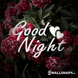 goodnight-images-love-hd-dp-download