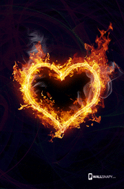 heart-love-images-for-mobile-hd-wallpaper