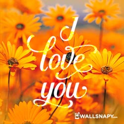 i-love-you-dp-photo-download