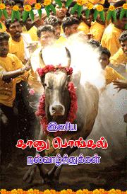 kanu-pongal-tamil-greetings-for-mobile