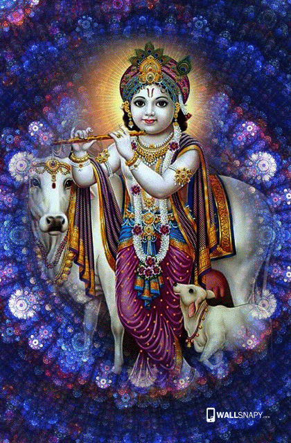 lord baby krishna with cow hd images 7722722