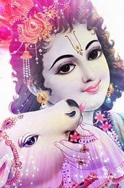 lord-krishna-pictures-hd-2019