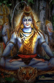lord-siva-setting-tiger-hd-images
