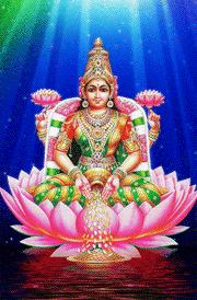 Maha laxmi gold