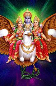 narayan-garudan-mahalakshmi-hd-wallpaper