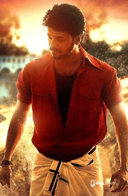 Vijay Love Hd Wallpaper : New mersal vijay red shirt hd wallpaper Primium mobile wallpapers - Wallsnapy.com