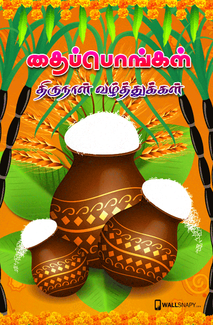 Pongal tamil greetings hd images primium mobile wallpapers pongal tamil greetings hd images m4hsunfo