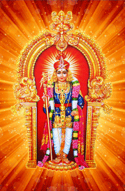 Lord Murugan 3d Wallpapers Free Download Vinnyoleo Vegetalinfo