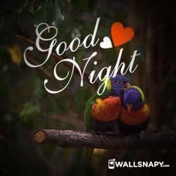 romantic-good-night-love-dp-images