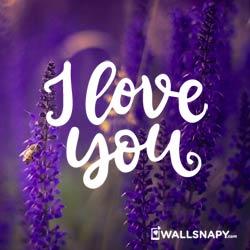 romantic-love-quotes-pictures-dp