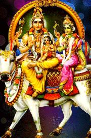 siva-sakthil-murugan-nanthi-family-hd-wallpaper