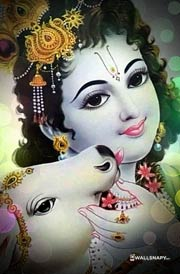 sri-krishna-with-cow-hd-images