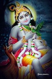 sri-krishnar-cow-hd-images-download