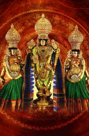 sri-malayappa-swamy-sridevi-and-bhoodevi-hd-wallpaper