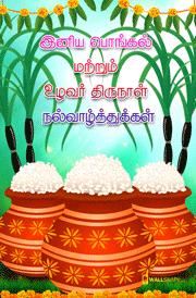 tamil-mattu-pongal-hd-images-mobile