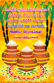 tamil-pongal-quotes-hd-images