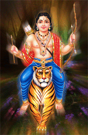 Tiger ayyappa