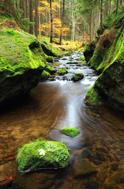 water-brook-hd-wallpape