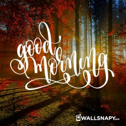 wharsapp-good-morning-dp-pictures-hd