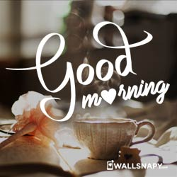 whatsapp-dp-love-good-morning-hd-images