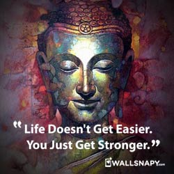 whatsapp-quotes-buddha-dp-hd-images